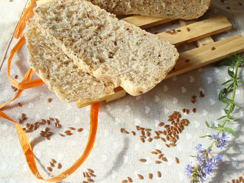 pane, macchina del pane, mdp, semi lino, lievito di birra